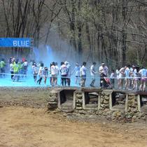 colorrun_blue.jpg